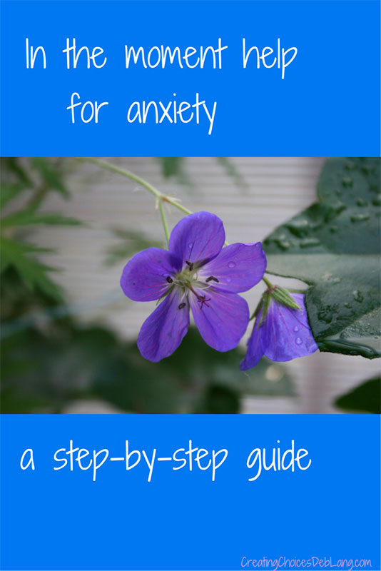 In the Moment Help for Anxiety
